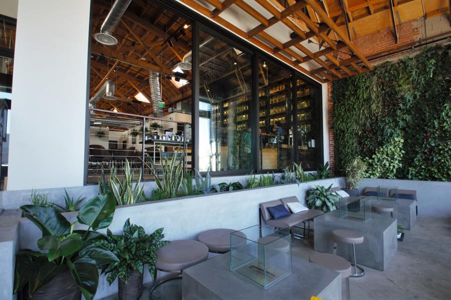 Tea Room Los Angeles Ca