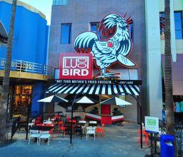 Ludo Bird